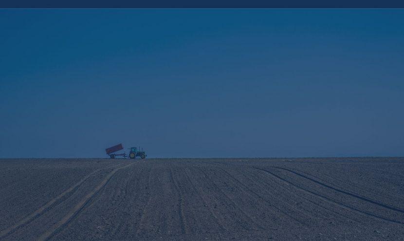 Contabilitatea în agricultură – necesitate de automatizare și digitalizare