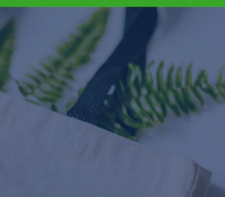 Green HR – Resurse Umane orientate spre sustenabilitate